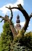 Klasztor w Lądzie 2